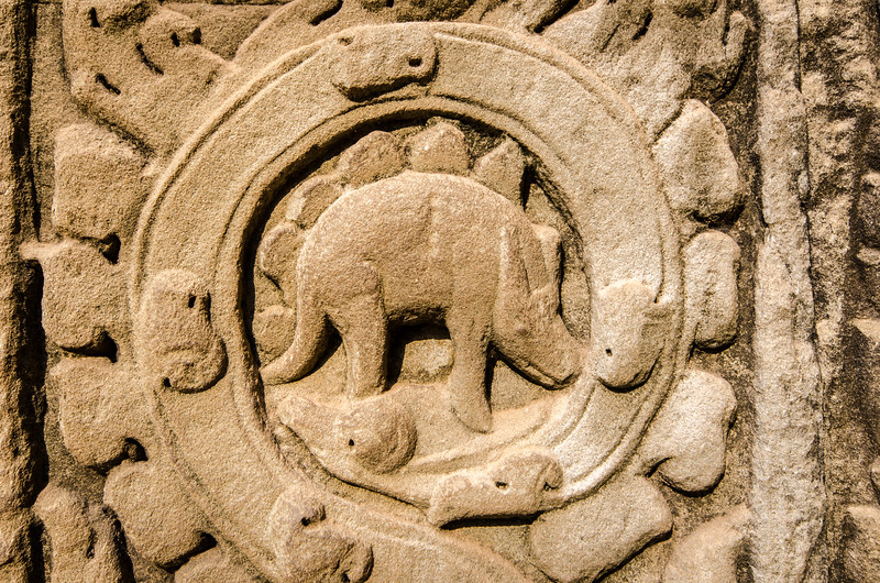 "This carving of what appears to be a Stegosaurus at Ta Prohm has been seized upon by creationists as ""evidence"" that dinosaurs and humans coexisted."