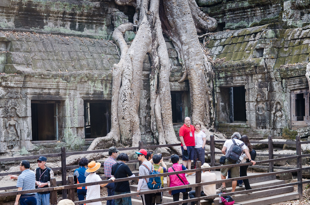 People love Ta Prohm for the trees and jungle.
