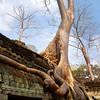 RTW Trip - , Cambodia