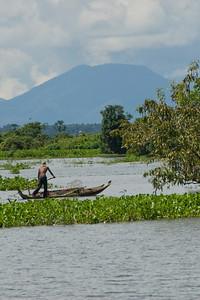 Man navigating a boat near mangroves in Tonle Sap