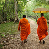Monks walk through jungle