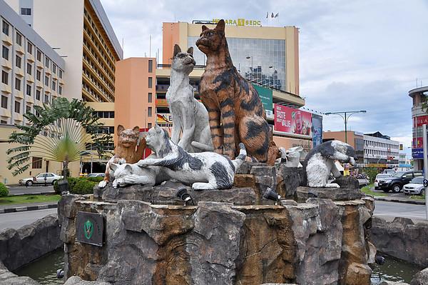 Cat City and around