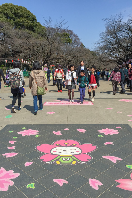 Cherry blossoms in Tokyo: Hanami viewing in Ueno Park, Tokyo