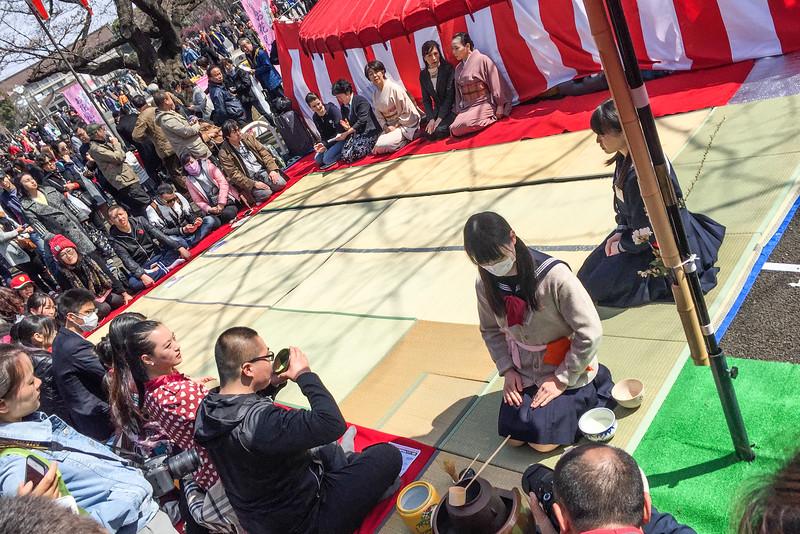 Sakura festivities: A Japanese tea ceremony in Ueno Park, Tokyo