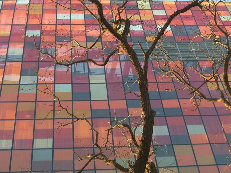 Autumn Reflections - Beijing, China