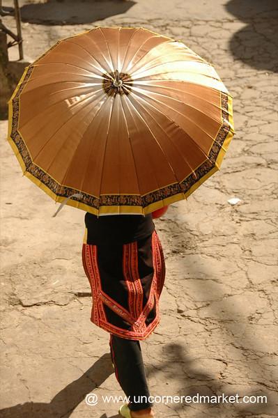Golden Umbrella - Yuanyang, China