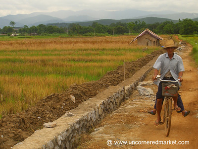 Biking in the Villages - Xishuangbanna, China