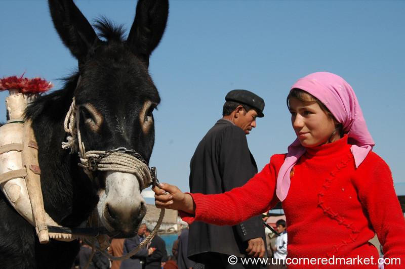 Uighur Girl Taking Care of Donkey - Kashgar, China