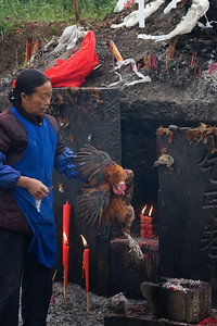 Driving through a small town, we passed the tomb of the local town god -- this woman was doing brisk business in slaughtering chickens as offerings to the god/ancestor.  The blood and some feathers were smeared on the tomb and then the chicken was taken home to have for dinner.