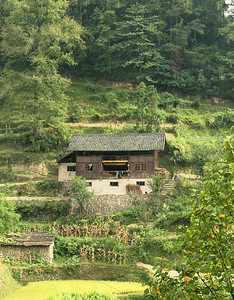 A typical Miao house, also in Xijang village.  It's harvest time so everyone is drying corn by hanging it on the eaves.