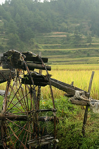 One of the water wheels used for irrigating the rice fields, on the way out of Paika.