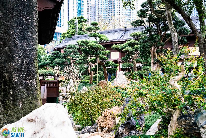 Viewing Chi Lin Nunnery through the garden