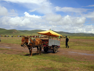 Inner Mongolia 2002, a wonderfully peaceful and lovely area, great fun horseback riding too.