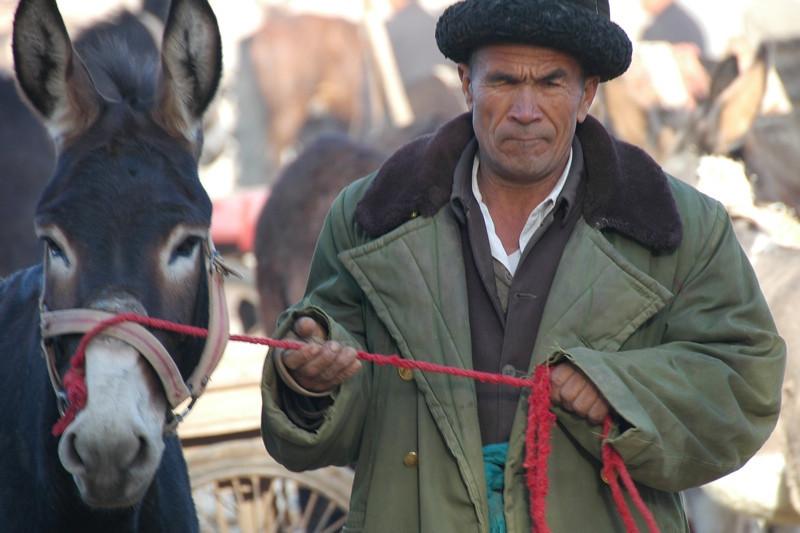 Uighur Man and Donkey - Kashgar, China