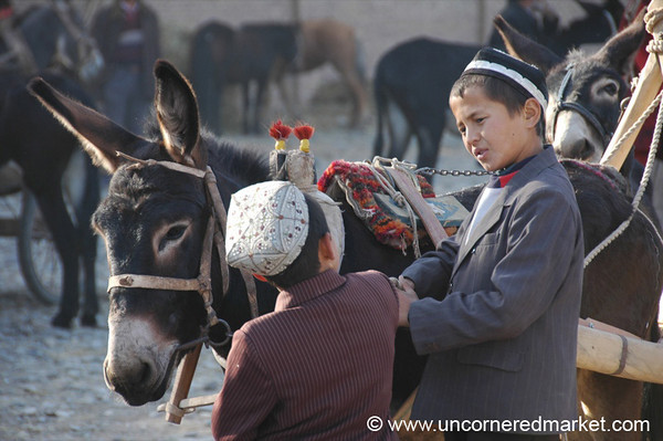 Uighur Children Guarding Donkeys - Kashgar, China