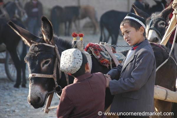 Uighur Children Guarding Donkeys - Kashgar, China