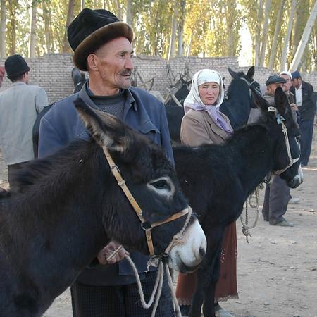 Kashgar Animal Market: Selling Donkeys - China