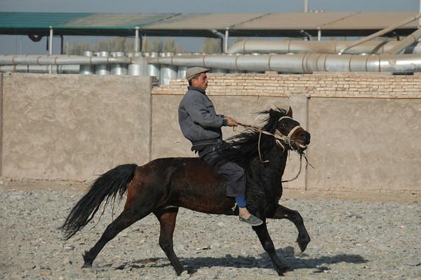 Uighur Man and Horse - Kashgar, China