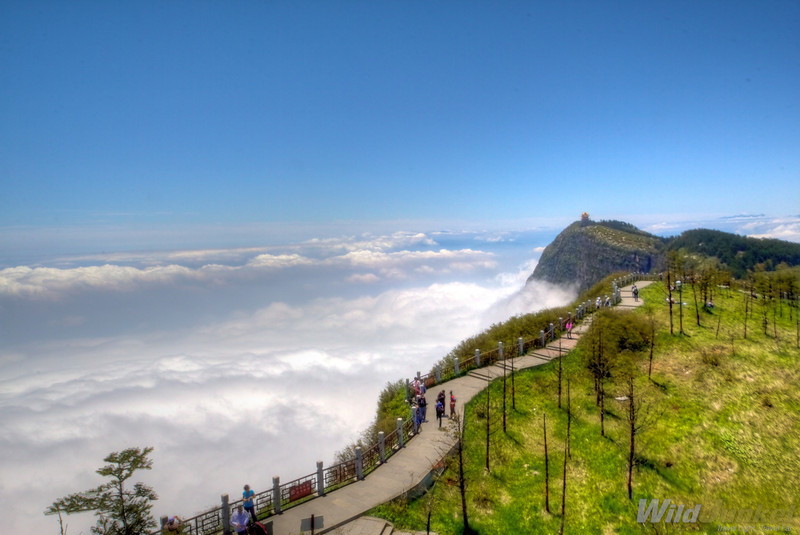 Peak of Mount Emei