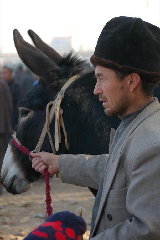 Uighur Donkey Vendor - Kashgar, China