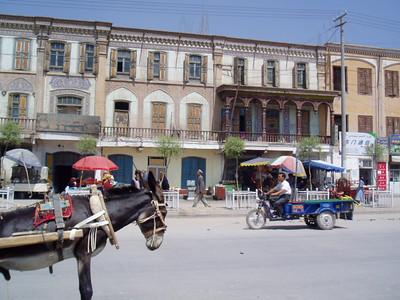 donkey, kashgar