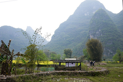 Rice paddies in their off-season are filled with blooming flowers outside of Yangshuo, China.