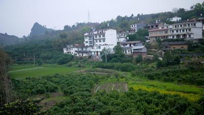 Grassy hillside in Yangshuo, China.