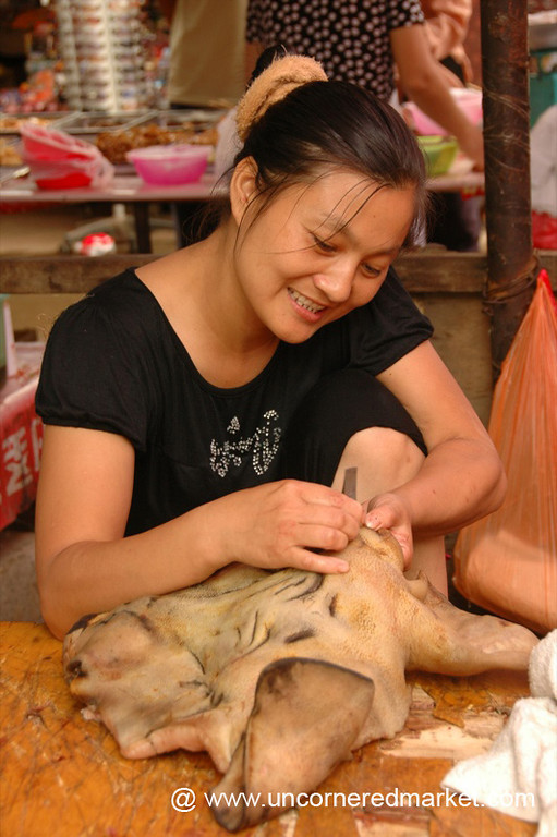 Plucking Hairs from Pig's Face - Xishuangbanna, China