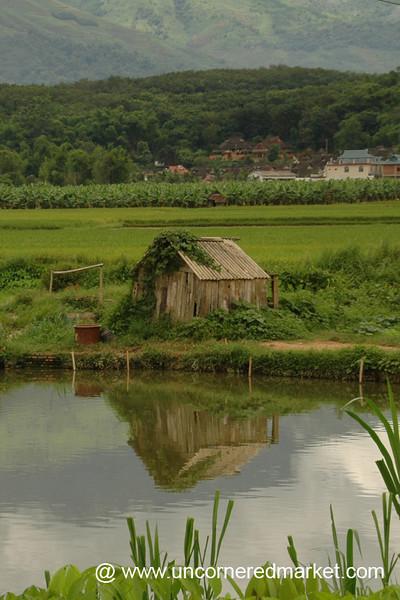 Dai Villages, Xishuangbanna Landscapes - Xishuangbanna, China