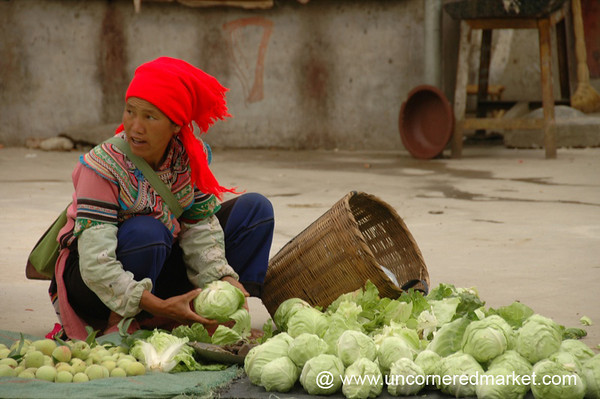 Hani Woman Vendor with Cabbages - Yuanyang, China