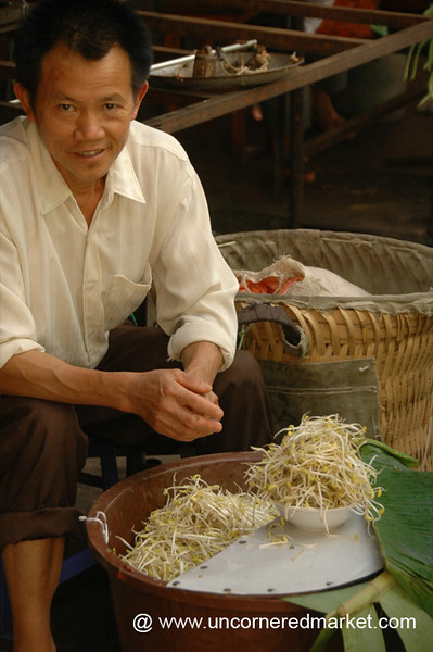Chinese Man Selling Bean Sprouts - Yuanyang, China