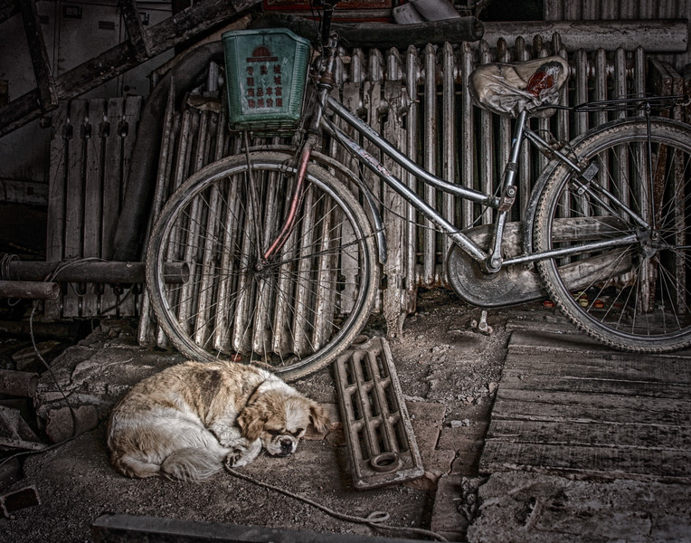 Sleeping Dog, China