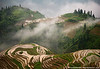 Rice Terraces - Ping An