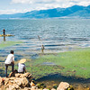 fishermen fishing with rod and line in the banks of Erhai lake (Dali, Yunnan, China)