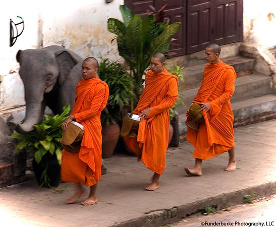 Receiving Alms - Luang Prabang, Laos