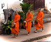 Receiving Alms - Luang Prabang, Laos