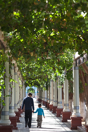 Turpan, Xinjiang, China - September 18,2009: Grape trellis cover some of the downtown streets in Turpan providing much needed shade from the hot sun.   (Photo by: Christopher Herwig)