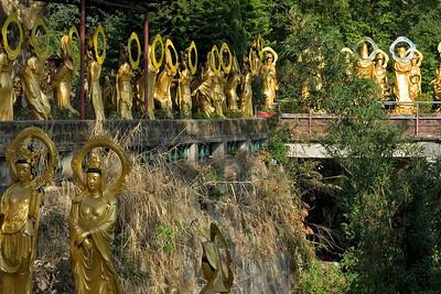 Buddha statues lining the bridge and sidewalks inside the 10,000 Buddhas Temple