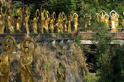Buddha statues lining the bridge and sidewalks inside the 10,000 Buddhas Temple