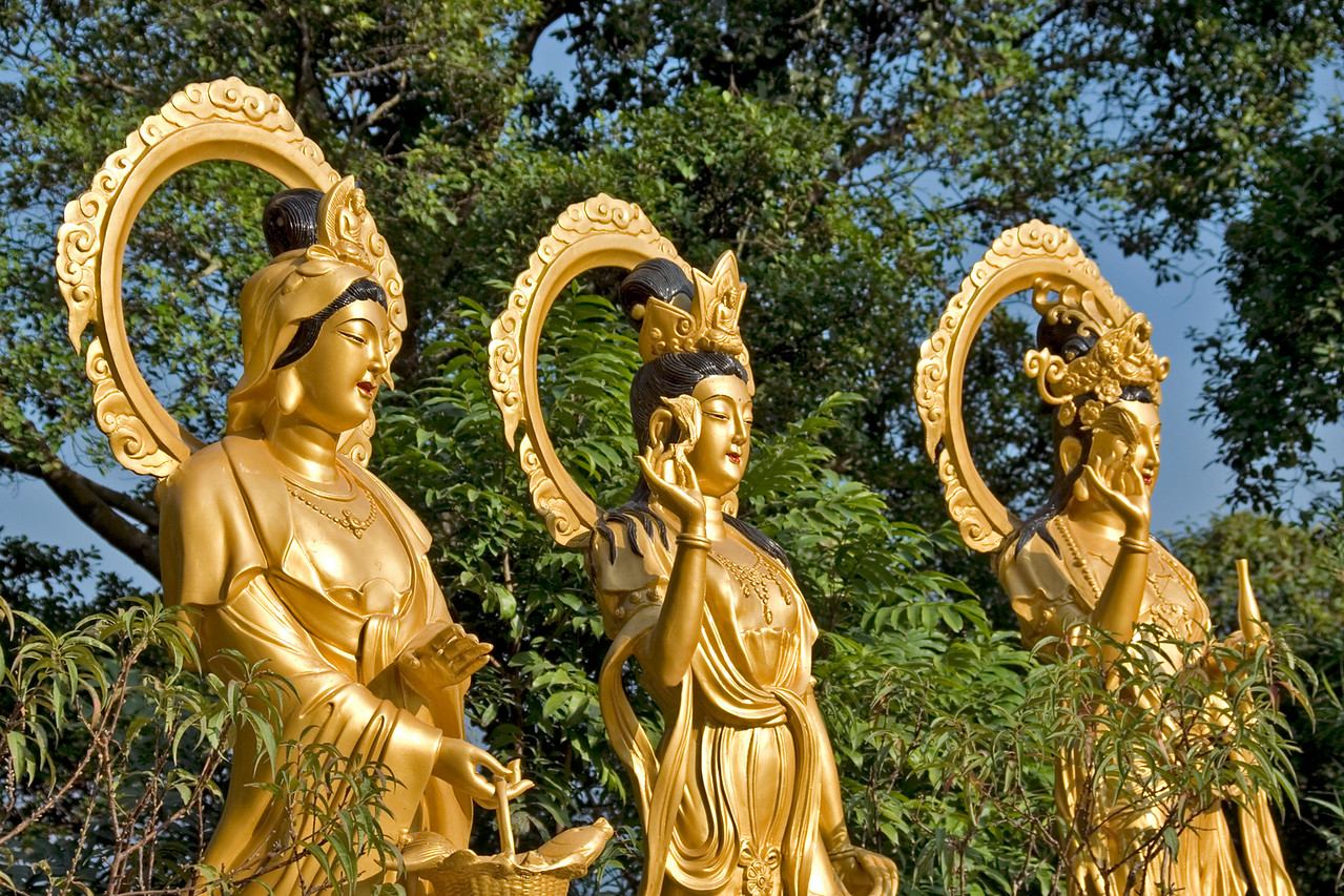 Three golden Buddha statues at the 10,000 Buddhas Temple in Hong Kong