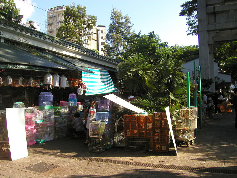"""Mong Kok -- On Kowloon Peninsula north of Yau Ma Tei, Mong Kok is a residential and industrial area, home of the Bird Market, the Ladies' Market on Tung Choi Street, and countless shops catering to Chinese. Read more: <a href=""""http://www.frommers.com/destinations/hongkong/0078020048.html#ixzz0QdXd9CKg"""">http://www.frommers.com/destinations/hongkong/0078020048.html#ixzz0QdXd9CKg</a>"""