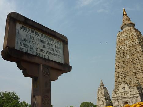 Mahabodhi Temple, Bodhgaya - India
