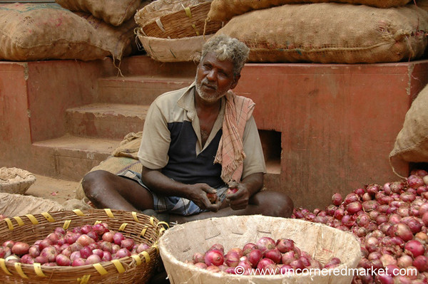 Just a Few Red Onions - Chennai, India