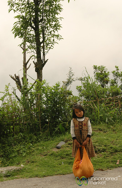 School Girl on the Way Home - West Bengal, India