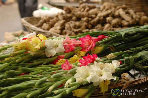 Flowers and Ginger - Darjeeling Market, India