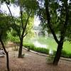 Lodi Gardens