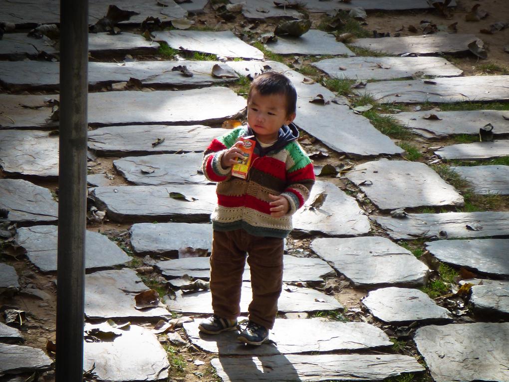 tibetan child dharamsala