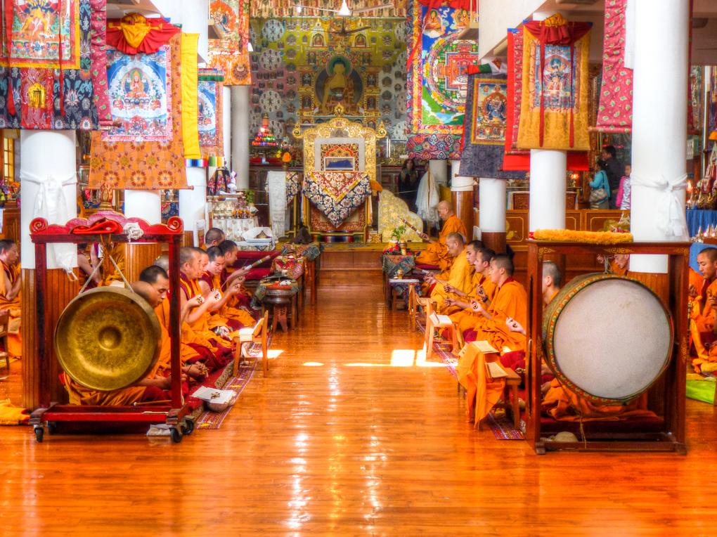 dharamsala monks praying meditating