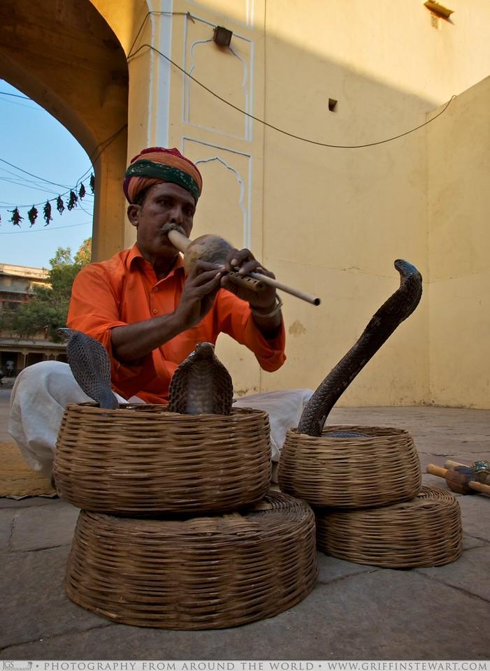 The Snake Charmer - Jaipur, India