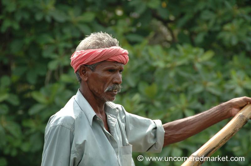Concentration - Kerala Backwaters, India